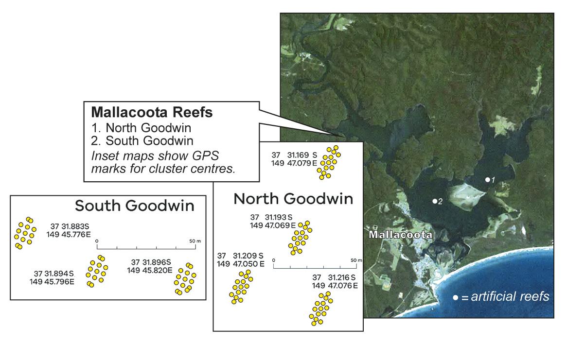Mallacoota's artificial reefs